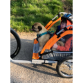 Alfie out for a ride with Dennis the pug!