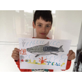 Abraham's shark picture for the RSPB competition