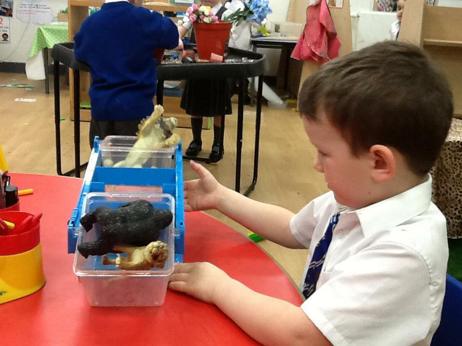 Comparing weights using 'heavier' and 'lighter'.