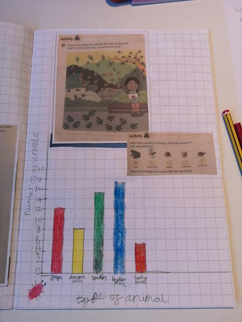 Louise's bar graph