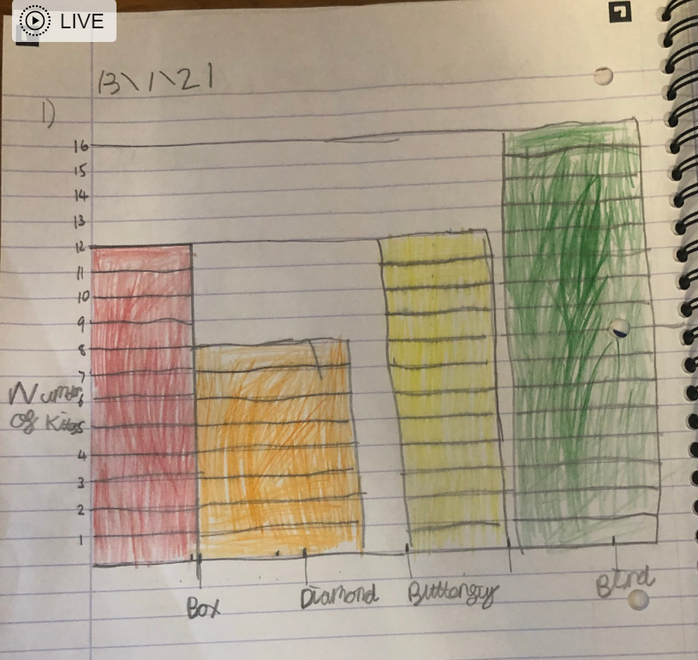 Rosie's bar graph