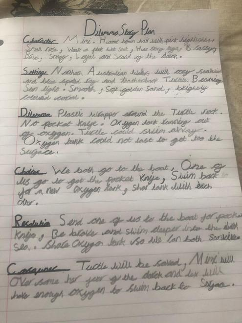 Amelia's story plan