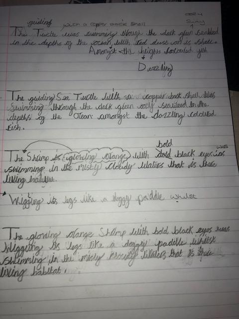 Amelia's underwater sentences