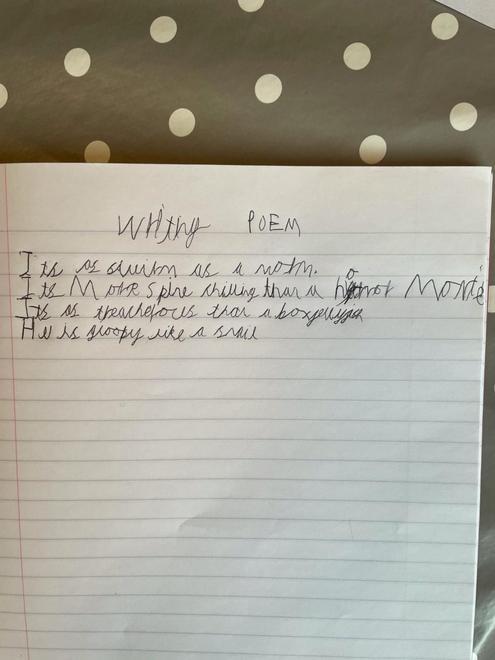 Zach's poem