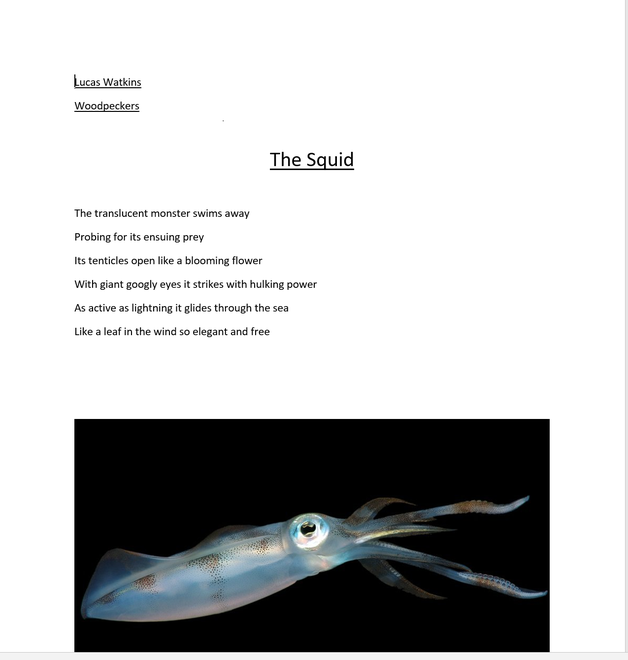 Lucas's poem