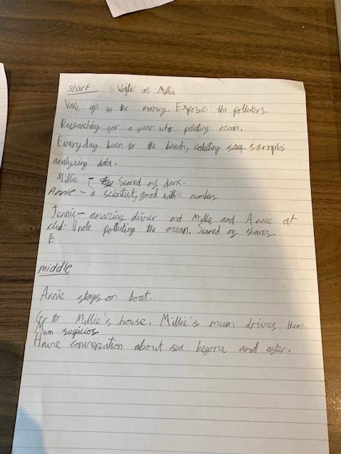 Florence's dilemma story plan