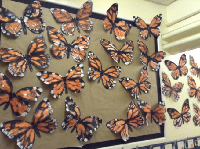 Reception- symmetry butterflies