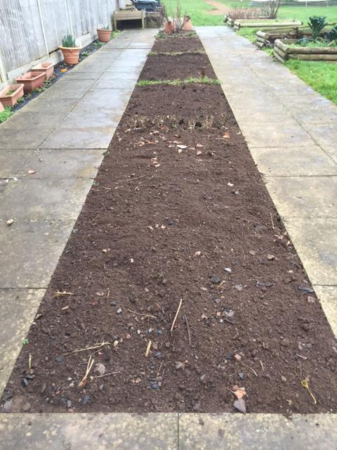 Vegetable beds prepared for planting