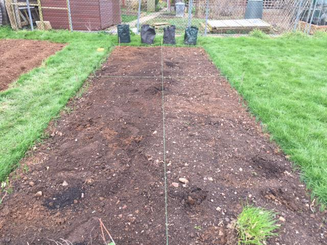 We divided our allotment into four equal parts.