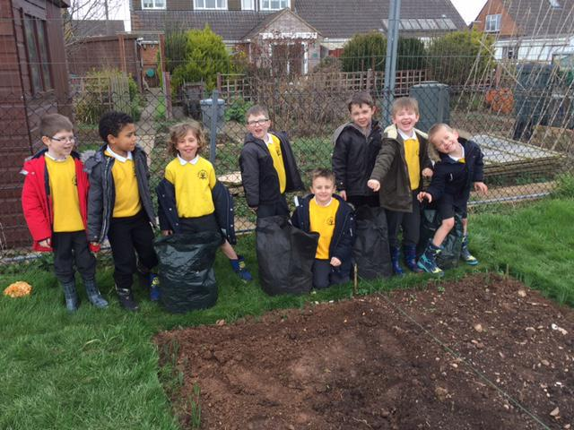 We have just planted our onion sets!