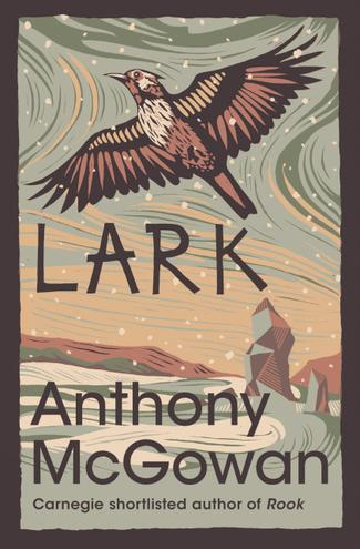 Lark  by Anthony McGowan - Age Range: 11+