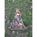 Leaf Art 'Mount Vesuvius' - Forest School