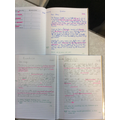 Boudicca's diary entry