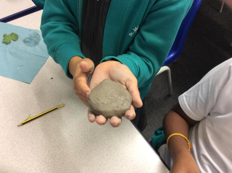 Making fossils using natural materials
