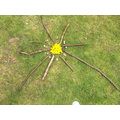Forest School - Inspired by Andy Goldsworthy's work
