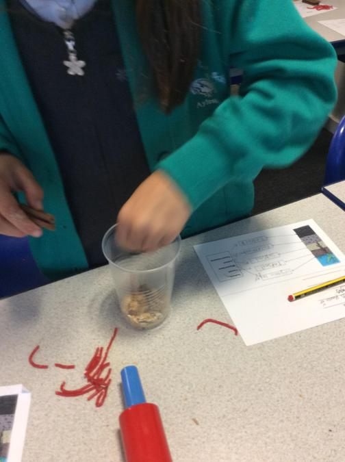 Making edible soil