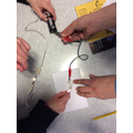 Science - Building circuits