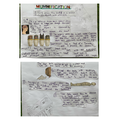 Seb's Explanation Text about Mummification