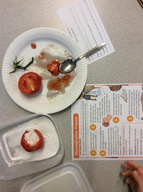 Mummifying tomatoes