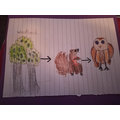 In science we are learning about habitats and food chains.