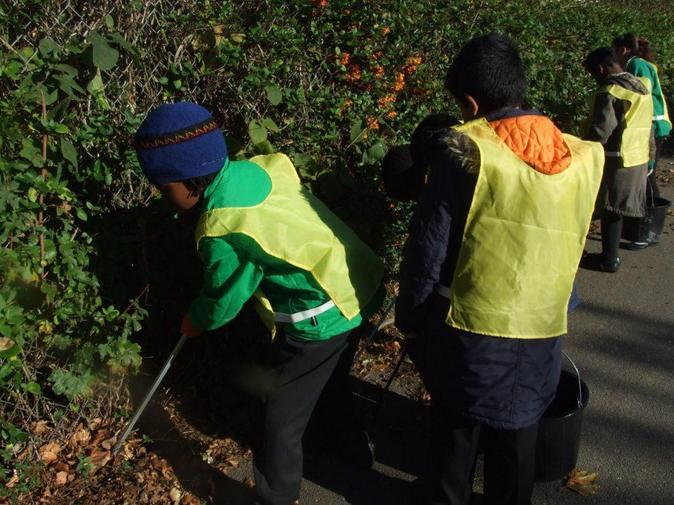 Eco Council Litter Pick