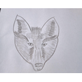 We sketched foxes.