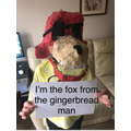 E's fox mask from the gingerbread man.
