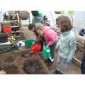 Conditioning the dry polytunnel soil