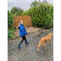 Evelyn walking Winston.