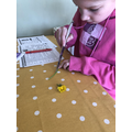 Maisie has been doing some Science work at home.