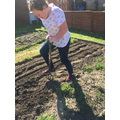 Matilda in 7E is digging over the garden.