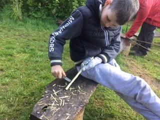 Learning to whittle wood in Forest Schools