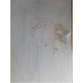 Rhiannon's Flying kangaroo