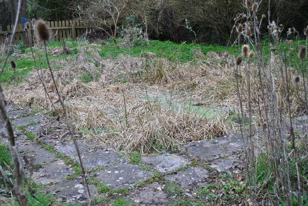 February 2013. School Pond restoration begins!