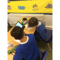 JJ and Ollie working hard to create a poster about the human skeleton!