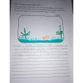 Rhy's science work on habitats.