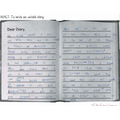Dexter's diary entry