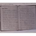 Alex's diary entry