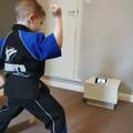 I can still do karate online!