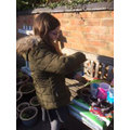Daisy's been very busy this weekend! Planting,