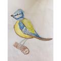 Barnaby's bird drawing