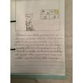 Gracie's BB book