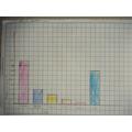 Maya's bar graph