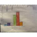 Georgia's bar graph