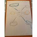 Evan's science poster