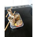 Eva's bird feeder