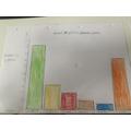 Millie's bar graph