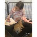 Gracie got a new puppy called Luna!