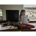 Sophie's Environmental Studies work