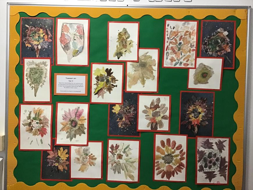 Nature was an inspiration for Year 4.